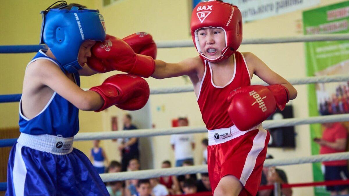 Боксеры тоже плачут…