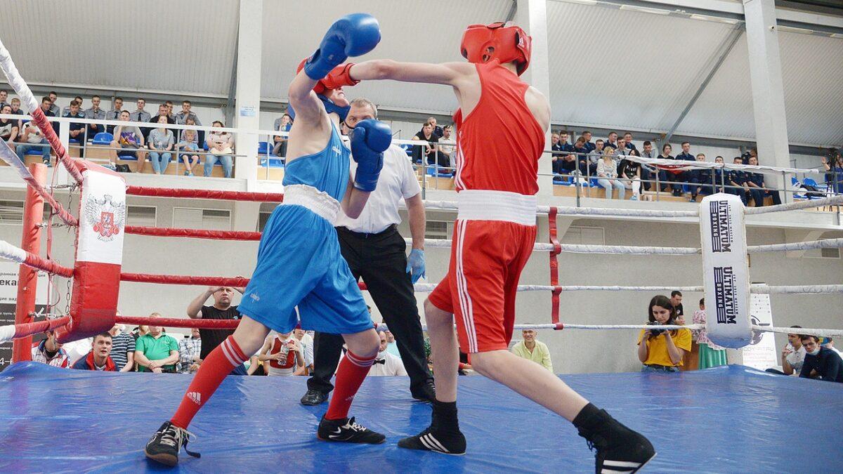 Сила воли — неотъемлемая часть бокса